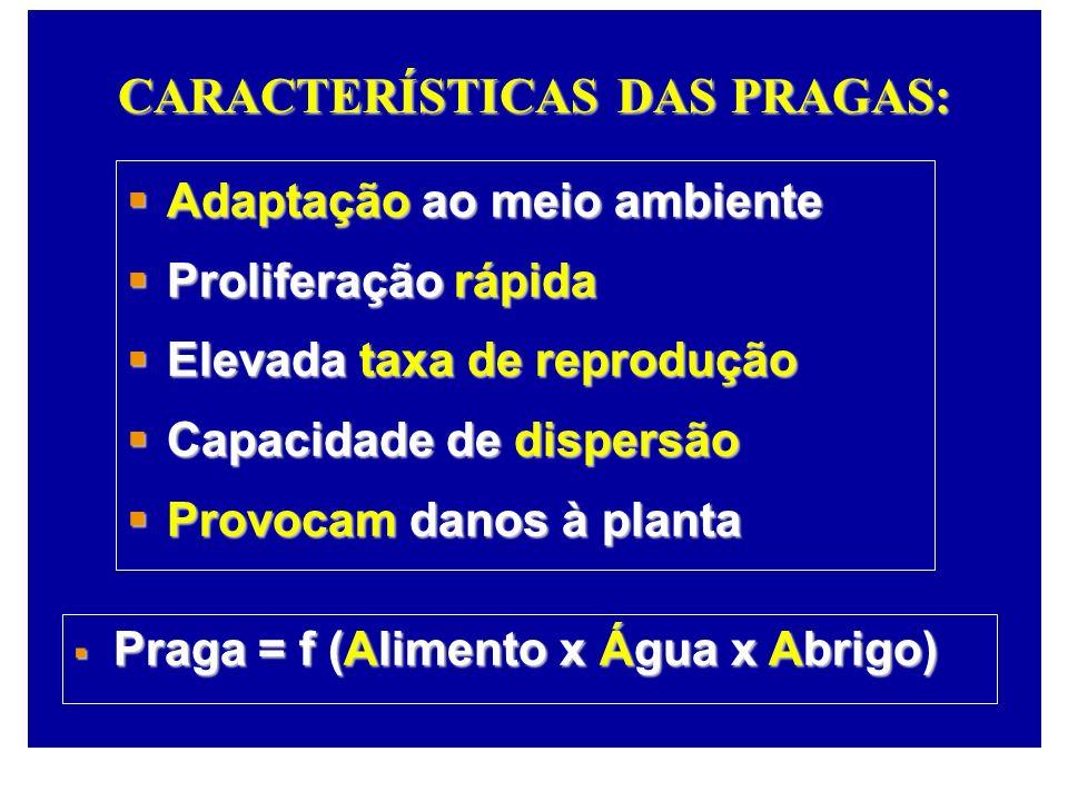 CARACTERÍSTICAS DAS PRAGAS: