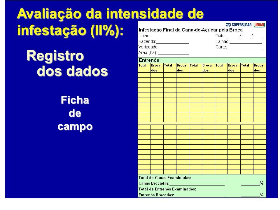 Registro dos dados Avaliação da intensidade de infestação (II%): Ficha