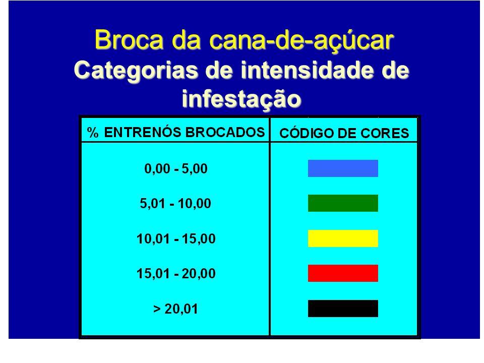 Categorias de intensidade de infestação