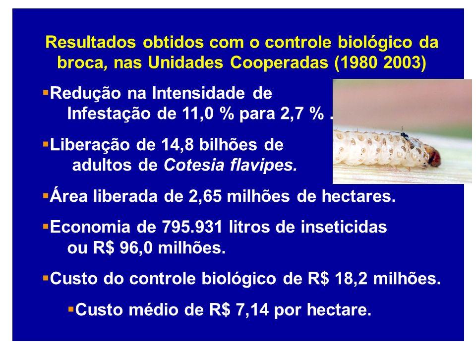 Resultados obtidos com o controle biológico da broca, nas Unidades Cooperadas (1980 2003)