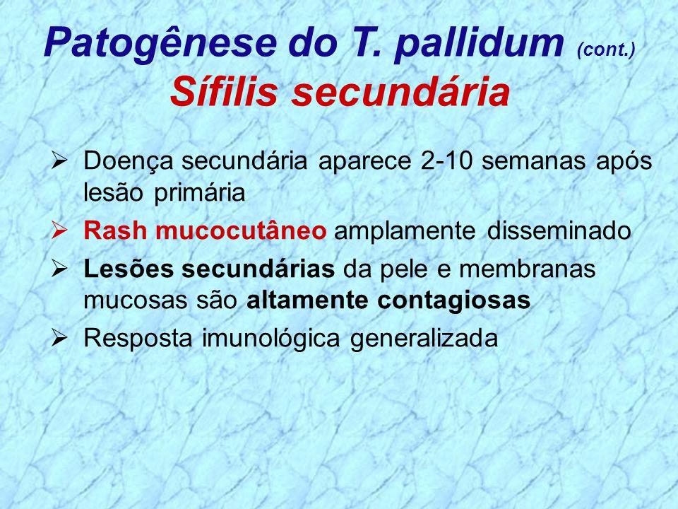 Patogênese do T. pallidum (cont.)