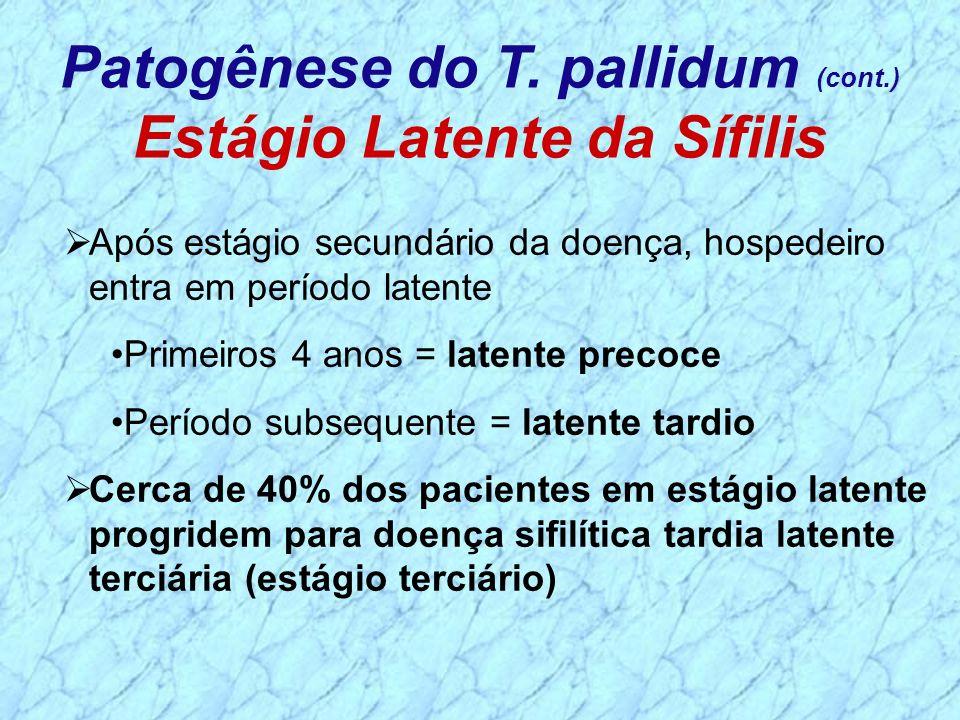 Patogênese do T. pallidum (cont.) Estágio Latente da Sífilis