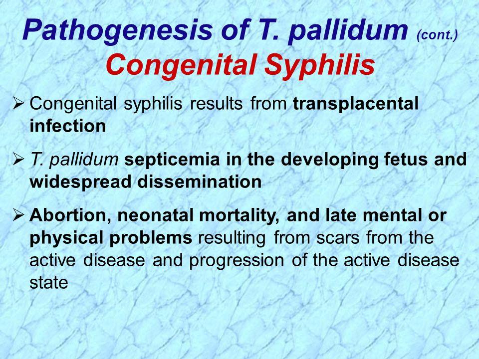 Pathogenesis of T. pallidum (cont.)