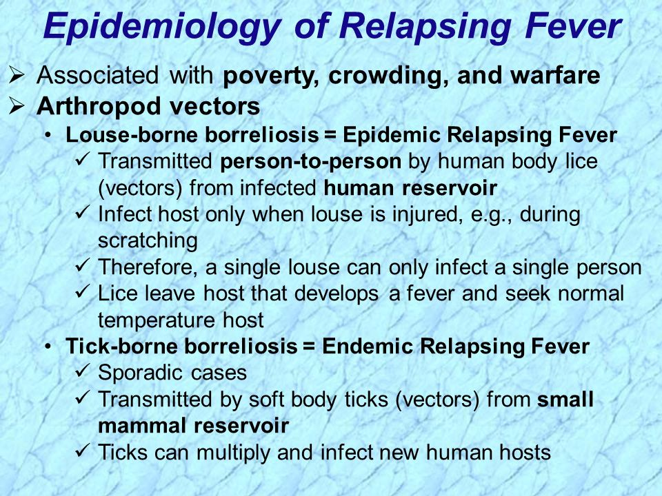 Epidemiology of Relapsing Fever