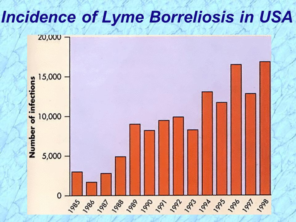 Incidence of Lyme Borreliosis in USA