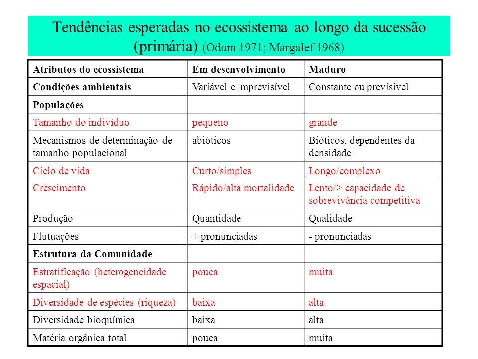 Tendências esperadas no ecossistema ao longo da sucessão (primária) (Odum 1971; Margalef 1968)