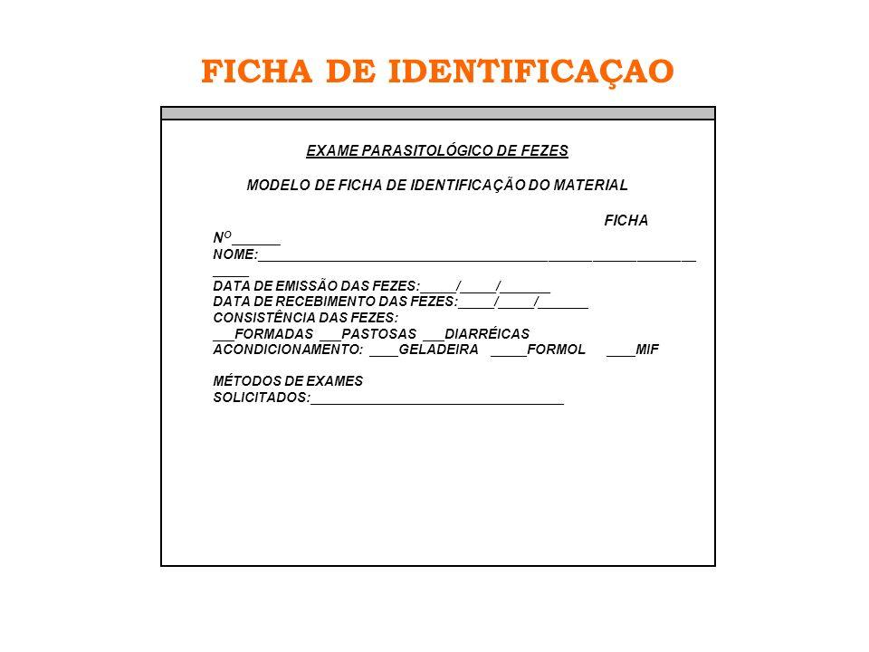 FICHA DE IDENTIFICAÇAO