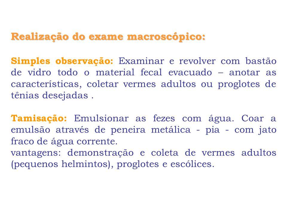 Realização do exame macroscópico:
