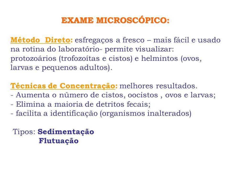 EXAME MICROSCÓPICO: