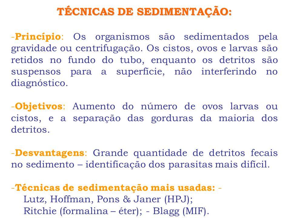 TÉCNICAS DE SEDIMENTAÇÃO: