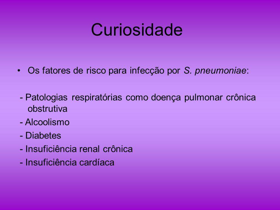 Curiosidade Os fatores de risco para infecção por S. pneumoniae:
