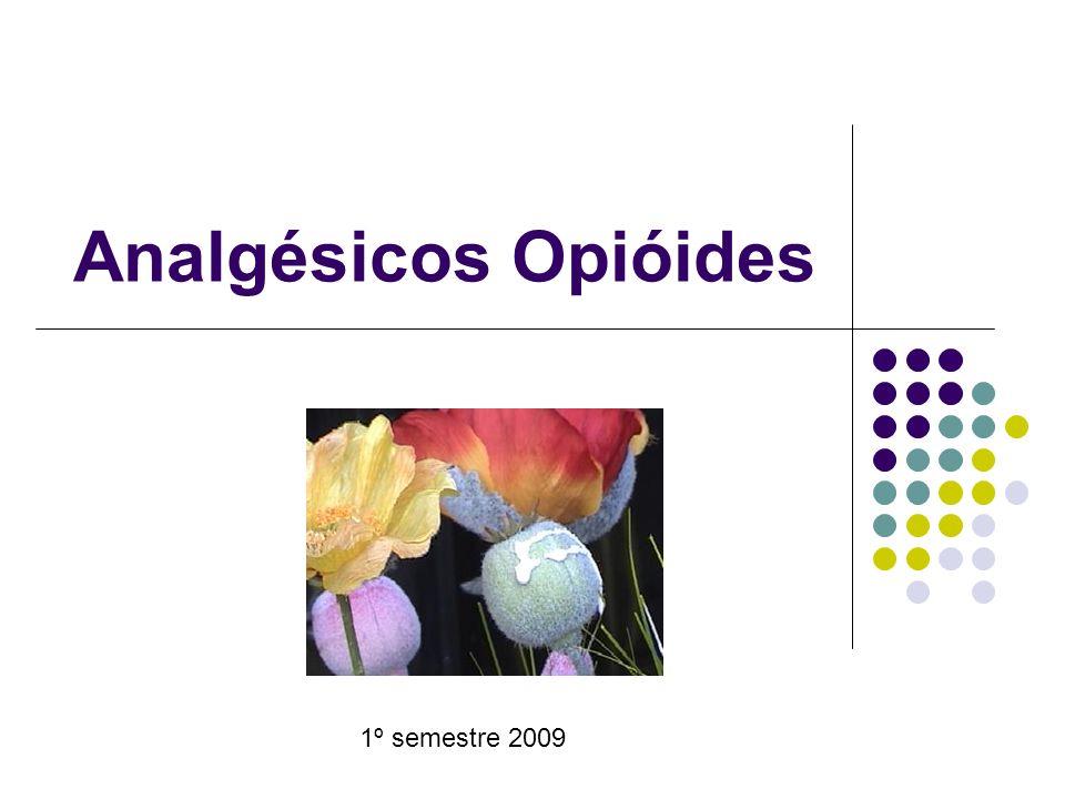 Analgésicos Opióides 1º semestre 2009