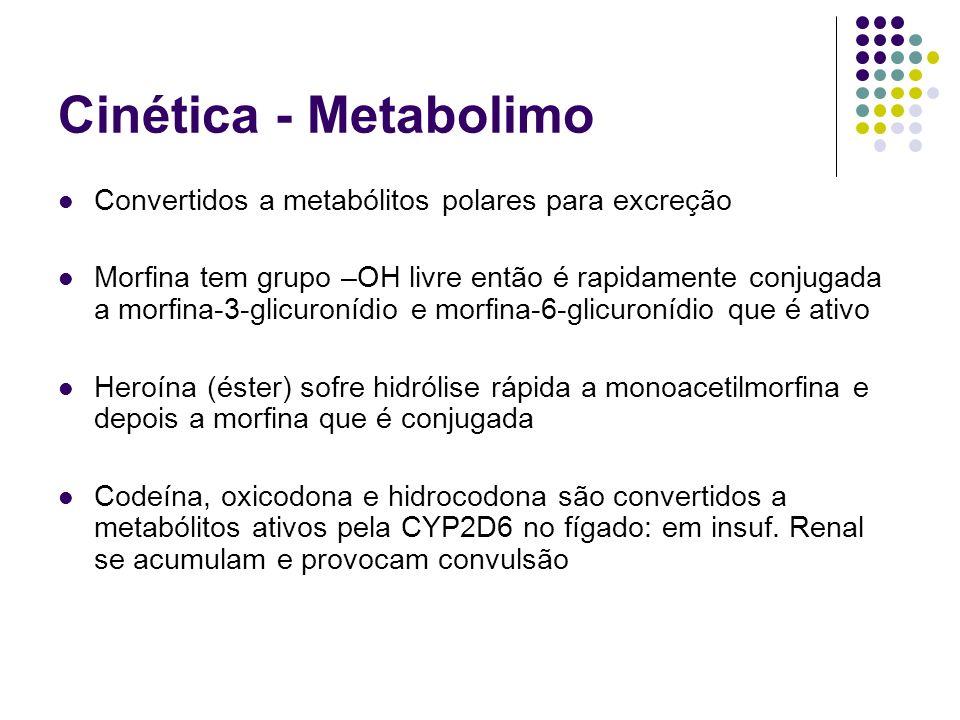 Cinética - Metabolimo Convertidos a metabólitos polares para excreção