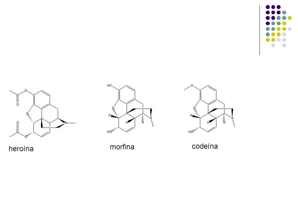 morfina codeína.