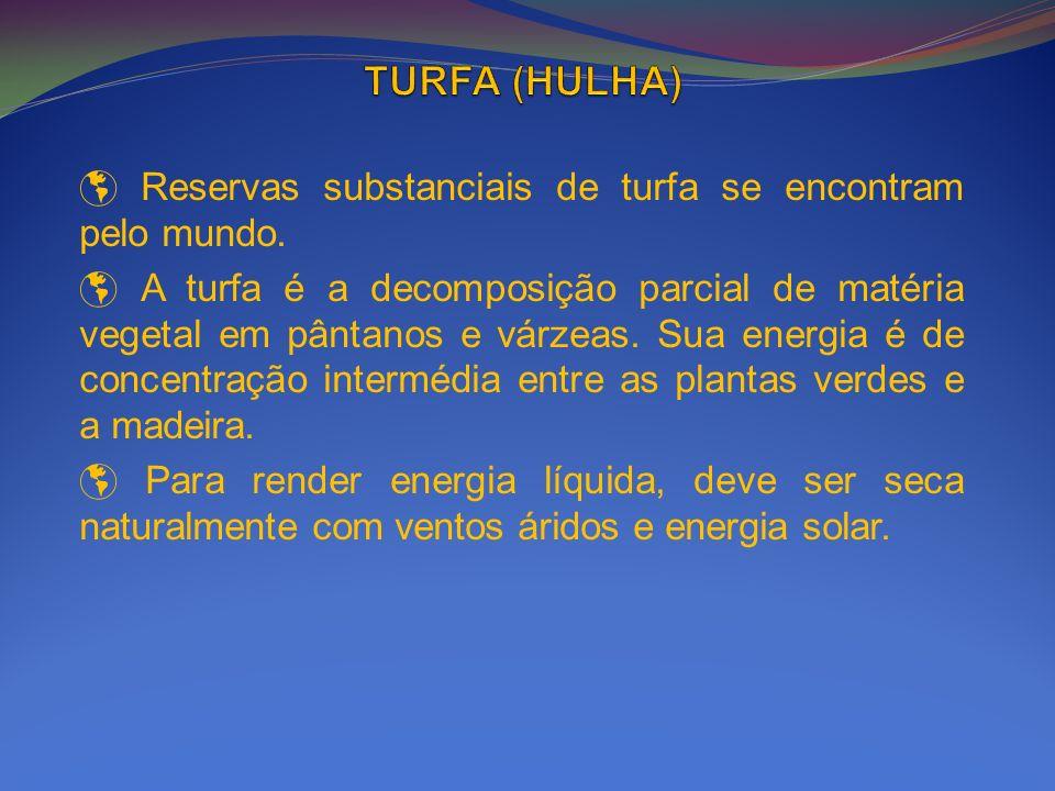 TURFA (HULHA) Reservas substanciais de turfa se encontram pelo mundo.
