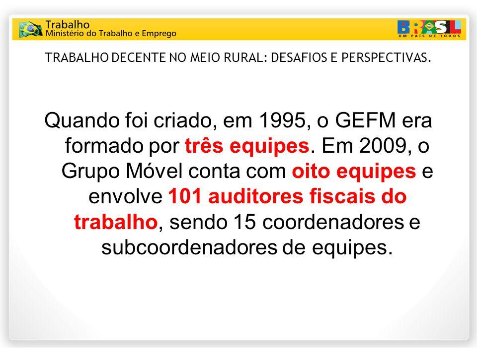 TRABALHO DECENTE NO MEIO RURAL: DESAFIOS E PERSPECTIVAS.