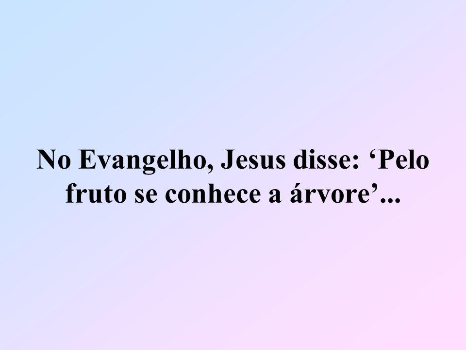 No Evangelho, Jesus disse: 'Pelo fruto se conhece a árvore'...