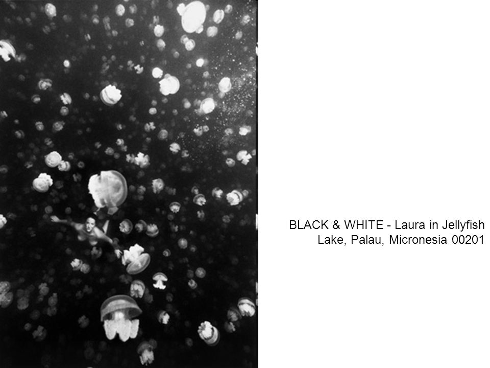 BLACK & WHITE - Laura in Jellyfish Lake, Palau, Micronesia 00201