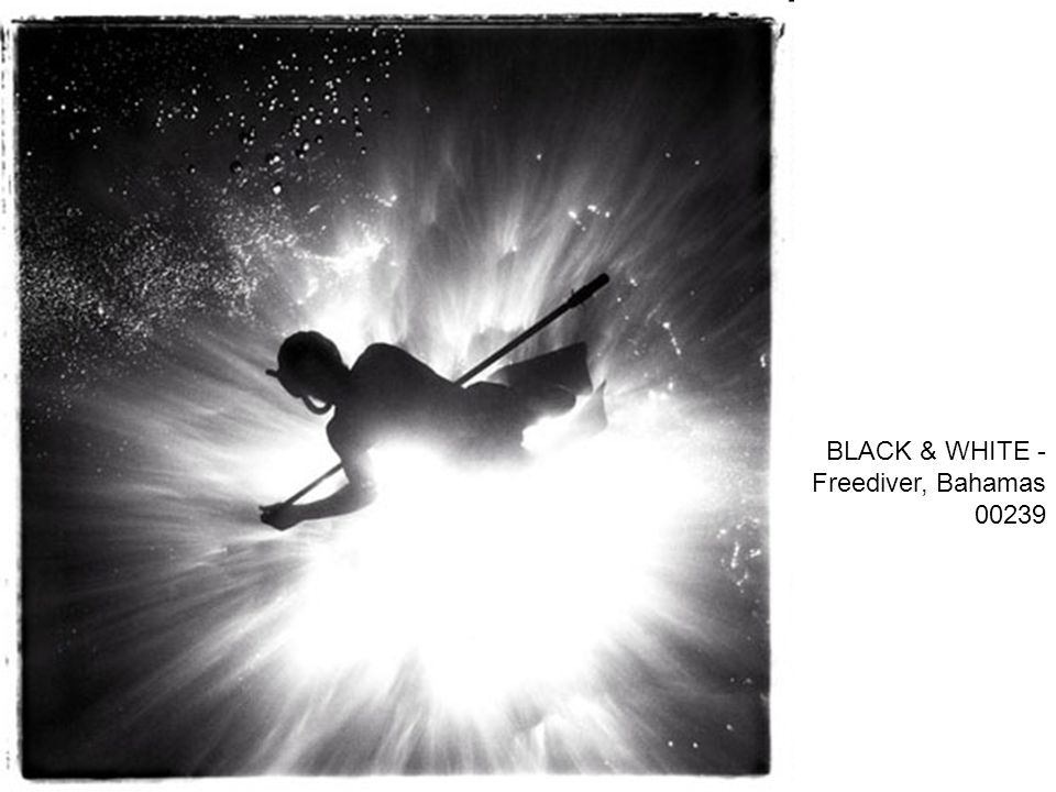 BLACK & WHITE - Freediver, Bahamas 00239