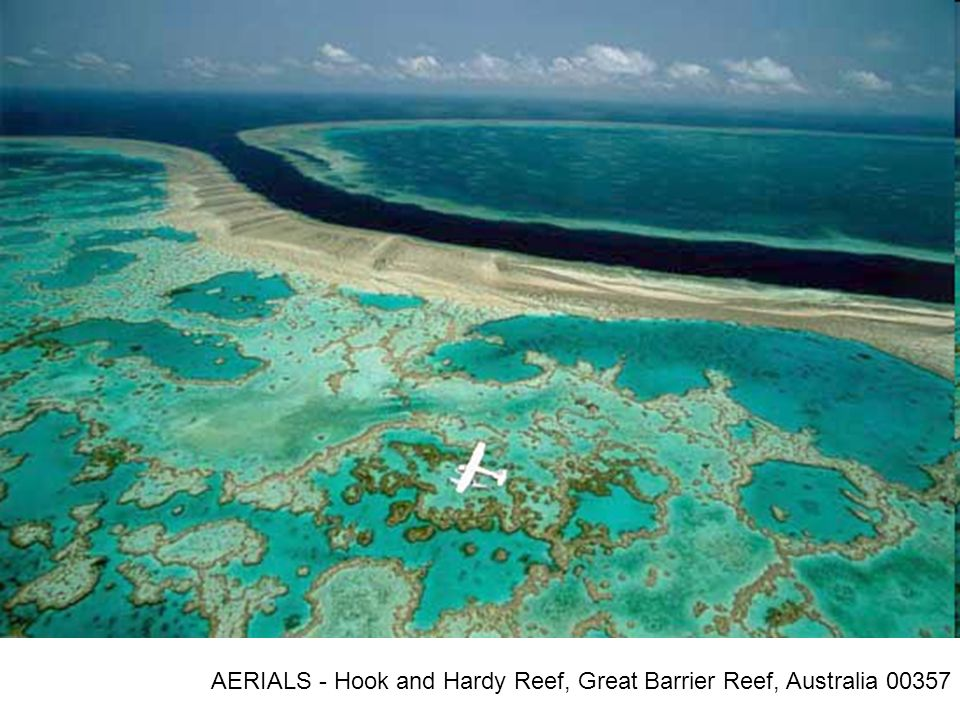 AERIALS - Hook and Hardy Reef, Great Barrier Reef, Australia 00357