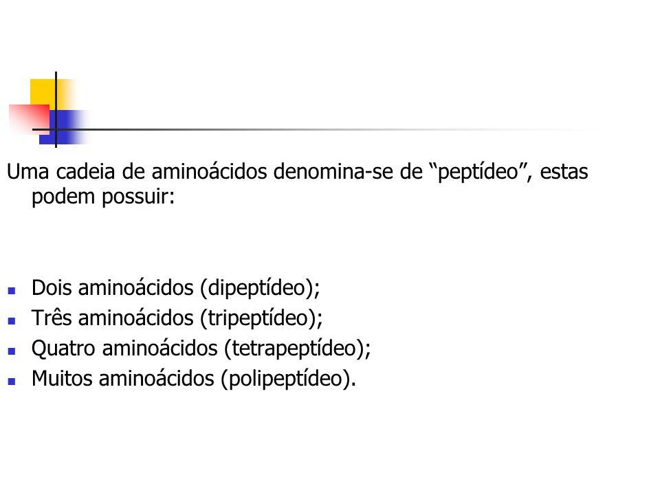 Uma cadeia de aminoácidos denomina-se de peptídeo , estas podem possuir: