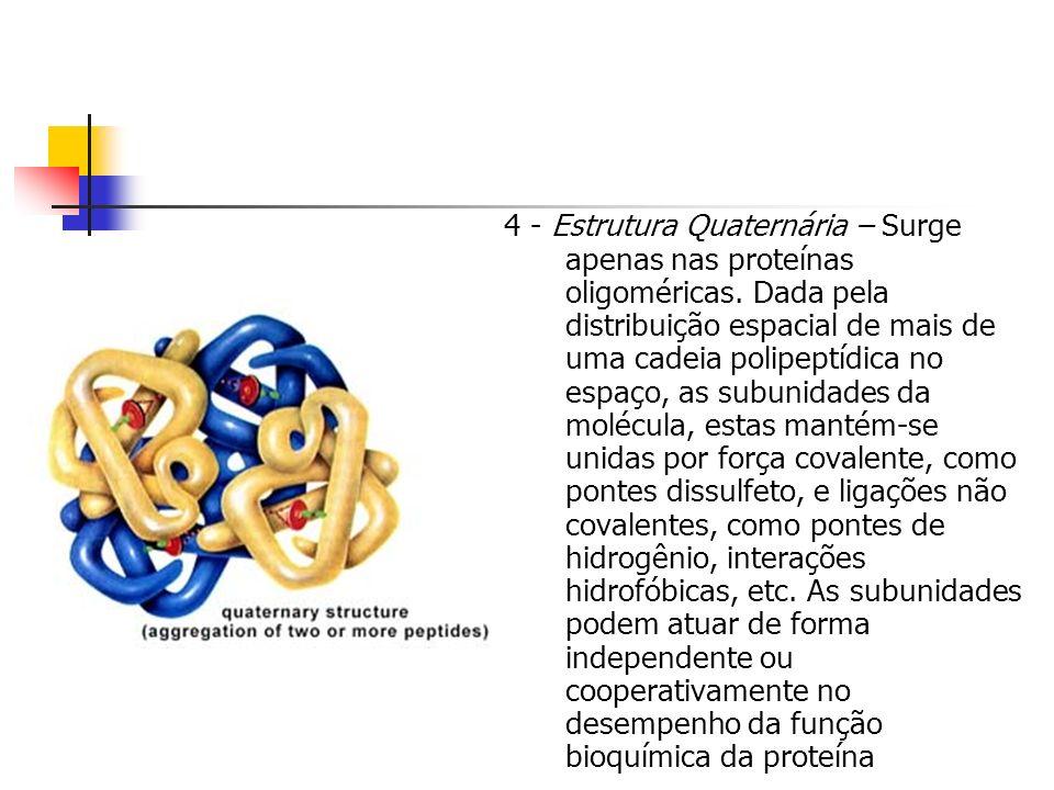 4 - Estrutura Quaternária – Surge apenas nas proteínas oligoméricas