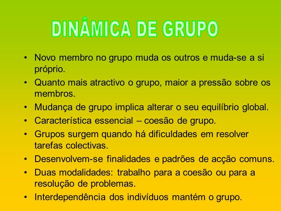 DINÂMICA DE GRUPO Novo membro no grupo muda os outros e muda-se a si próprio. Quanto mais atractivo o grupo, maior a pressão sobre os membros.