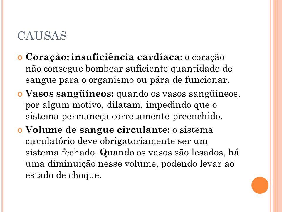 CAUSAS Coração: insuficiência cardíaca: o coração não consegue bombear suficiente quantidade de sangue para o organismo ou pára de funcionar.