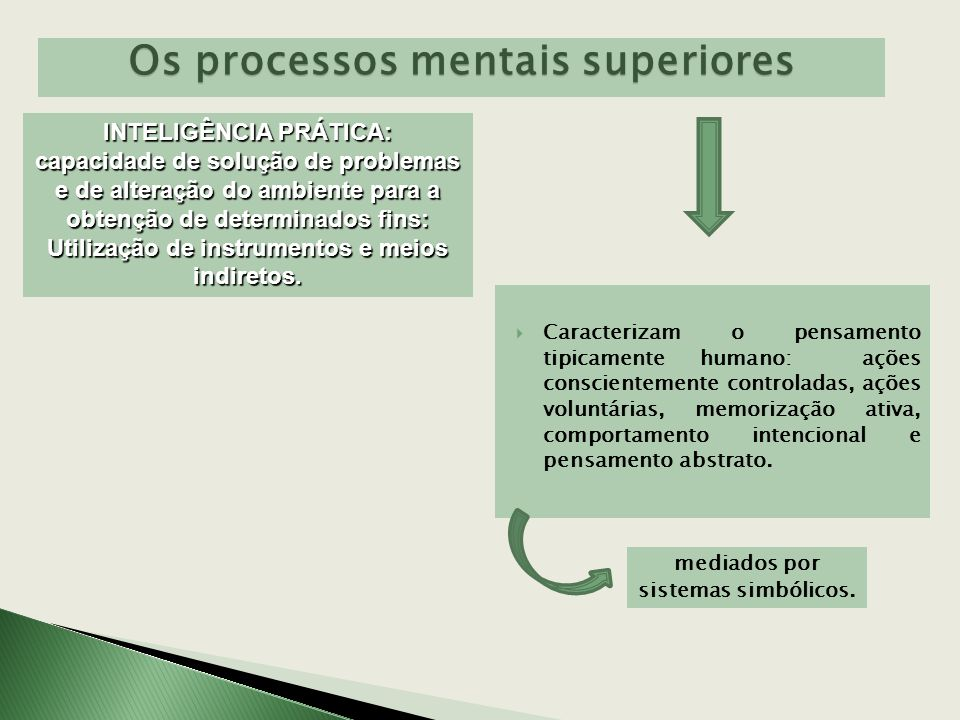 Os processos mentais superiores