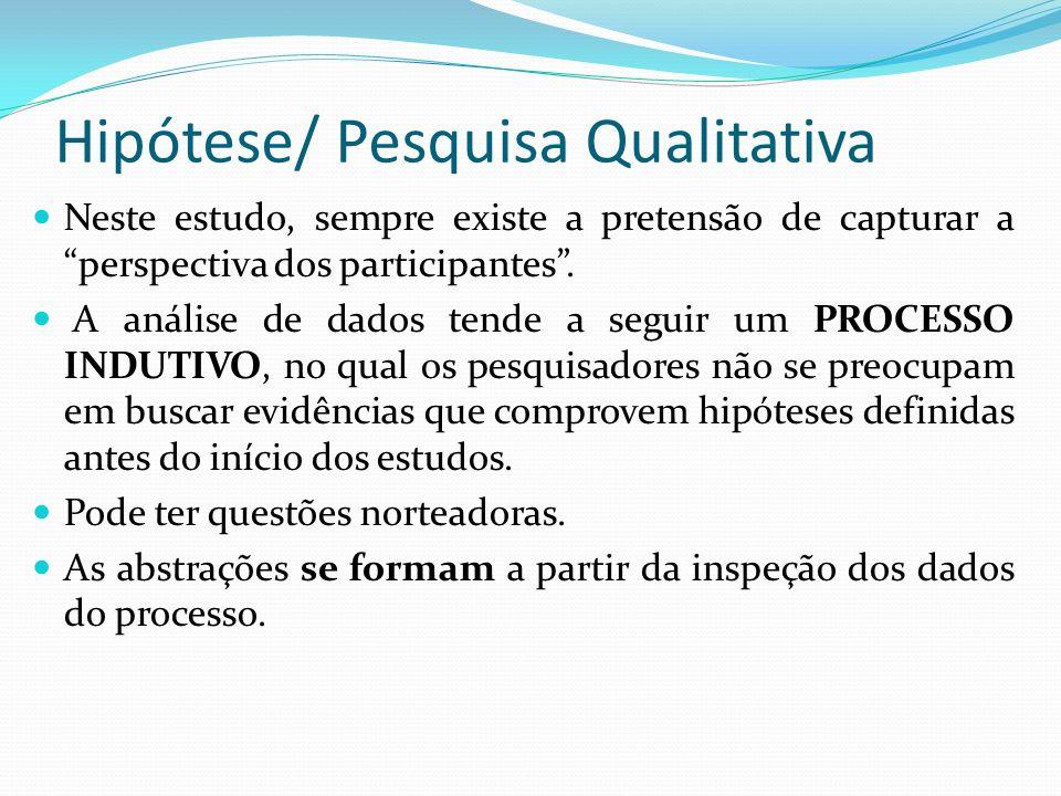 Hipótese/ Pesquisa Qualitativa