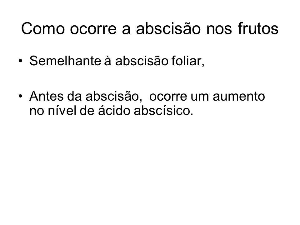 Como ocorre a abscisão nos frutos