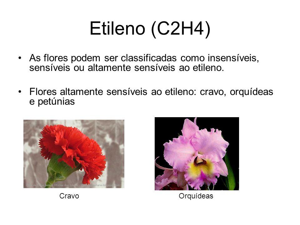 Etileno (C2H4) As flores podem ser classificadas como insensíveis, sensíveis ou altamente sensíveis ao etileno.