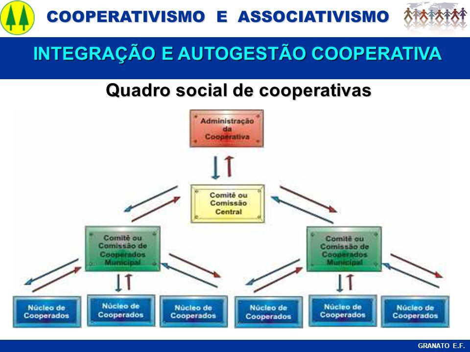 INTEGRAÇÃO E AUTOGESTÃO COOPERATIVA Quadro social de cooperativas