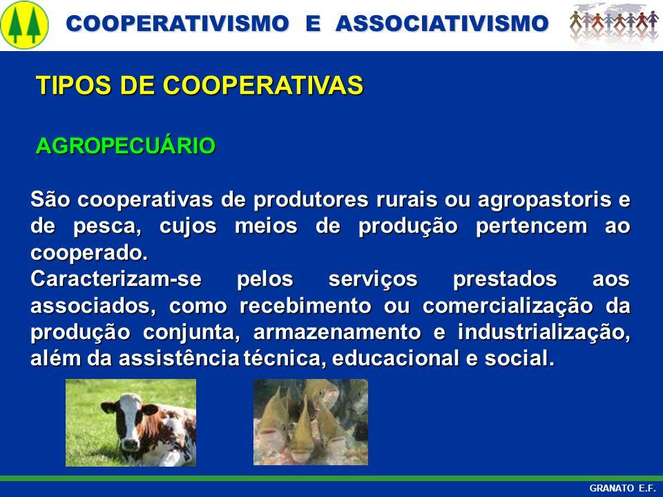 TIPOS DE COOPERATIVAS AGROPECUÁRIO