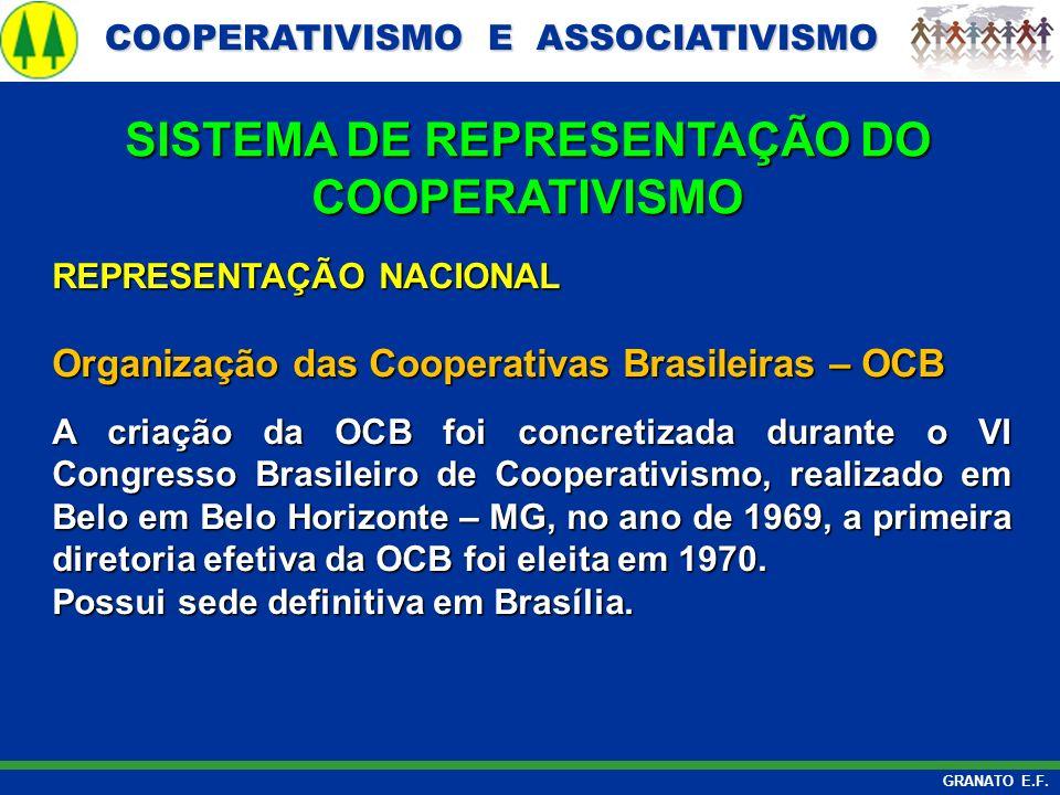SISTEMA DE REPRESENTAÇÃO DO COOPERATIVISMO