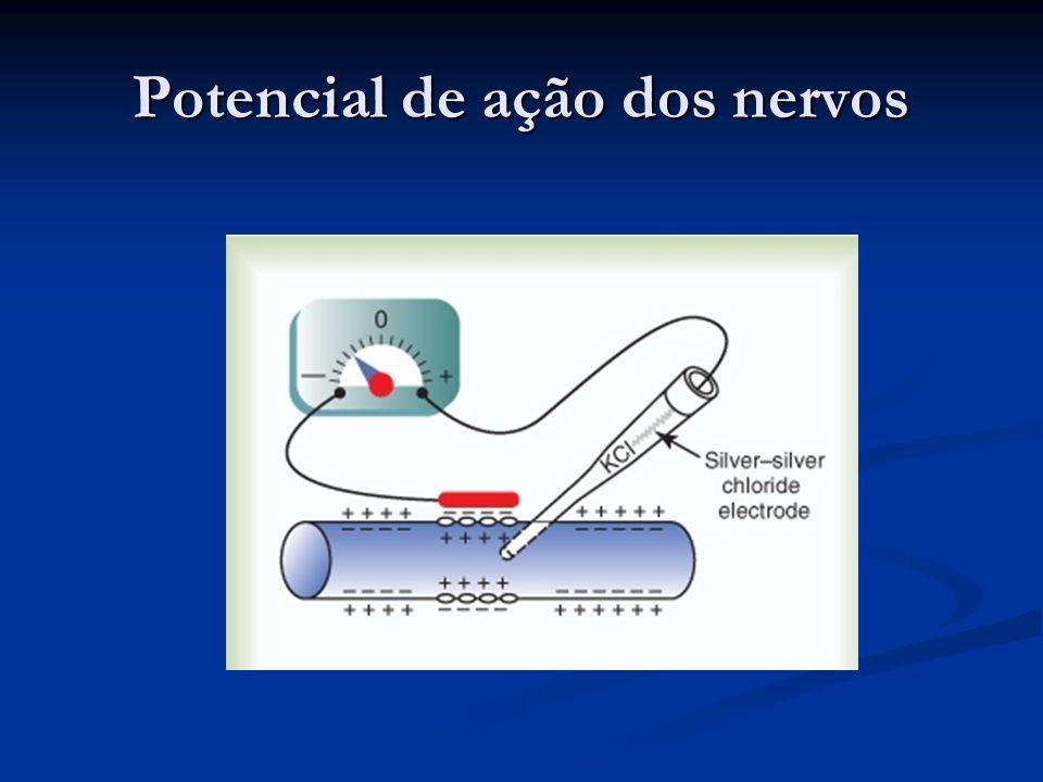 Potencial de ação dos nervos