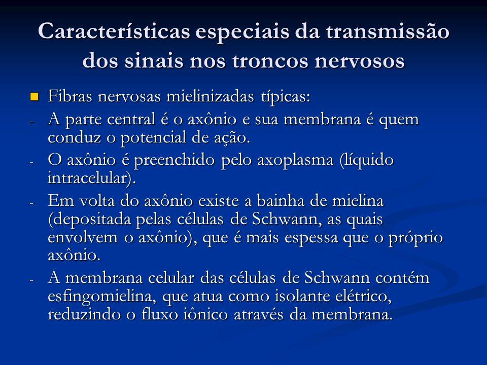 Características especiais da transmissão dos sinais nos troncos nervosos