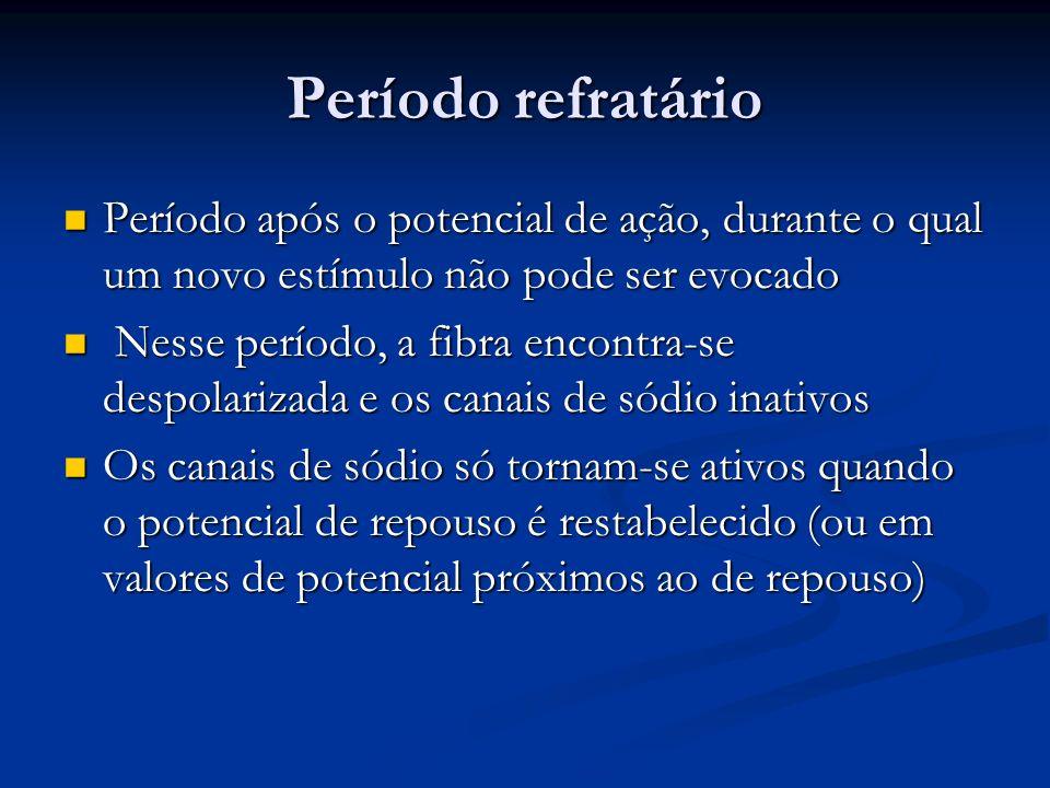 Período refratário Período após o potencial de ação, durante o qual um novo estímulo não pode ser evocado.