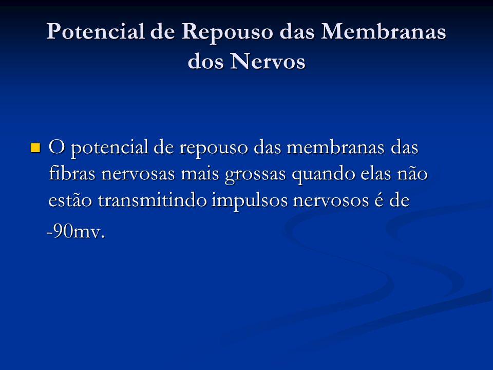 Potencial de Repouso das Membranas dos Nervos