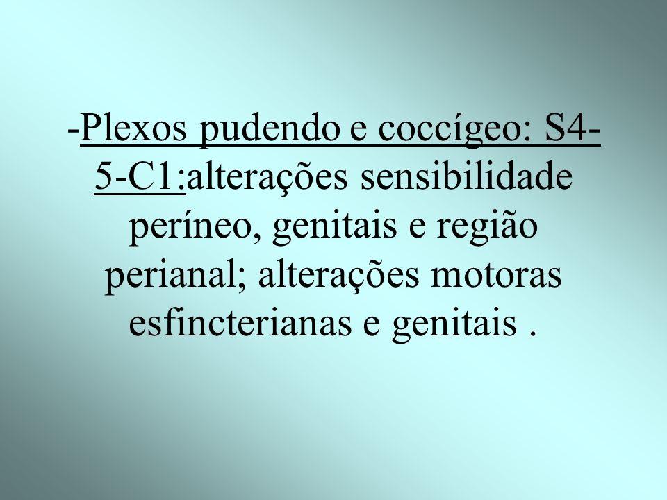 -Plexos pudendo e coccígeo: S4-5-C1:alterações sensibilidade períneo, genitais e região perianal; alterações motoras esfincterianas e genitais .