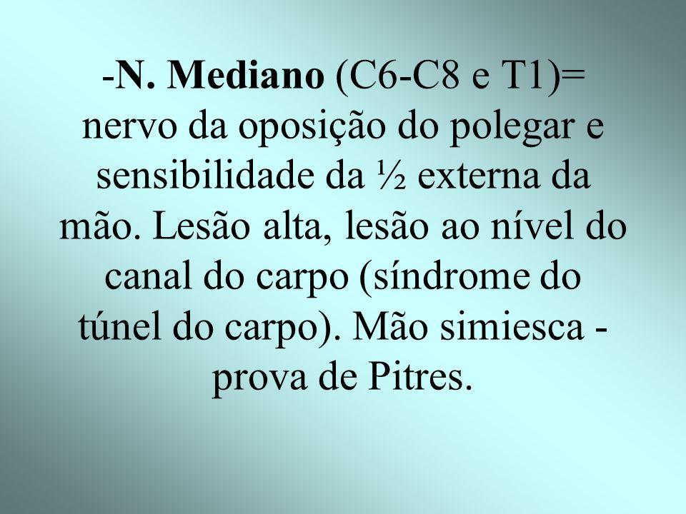 -N. Mediano (C6-C8 e T1)= nervo da oposição do polegar e sensibilidade da ½ externa da mão.
