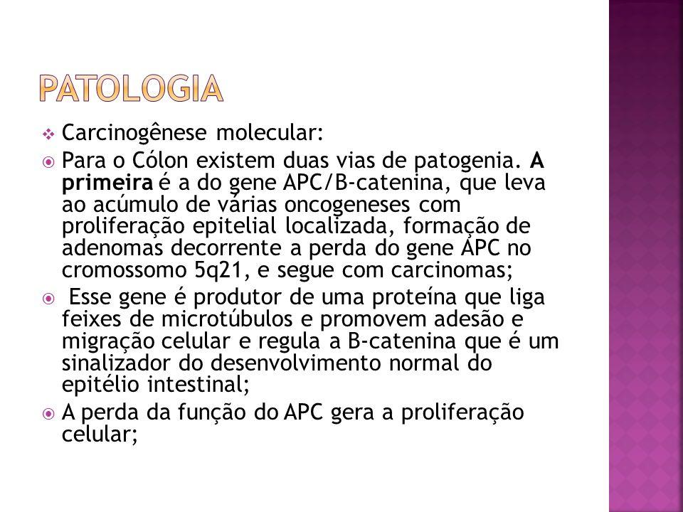 Patologia Carcinogênese molecular: