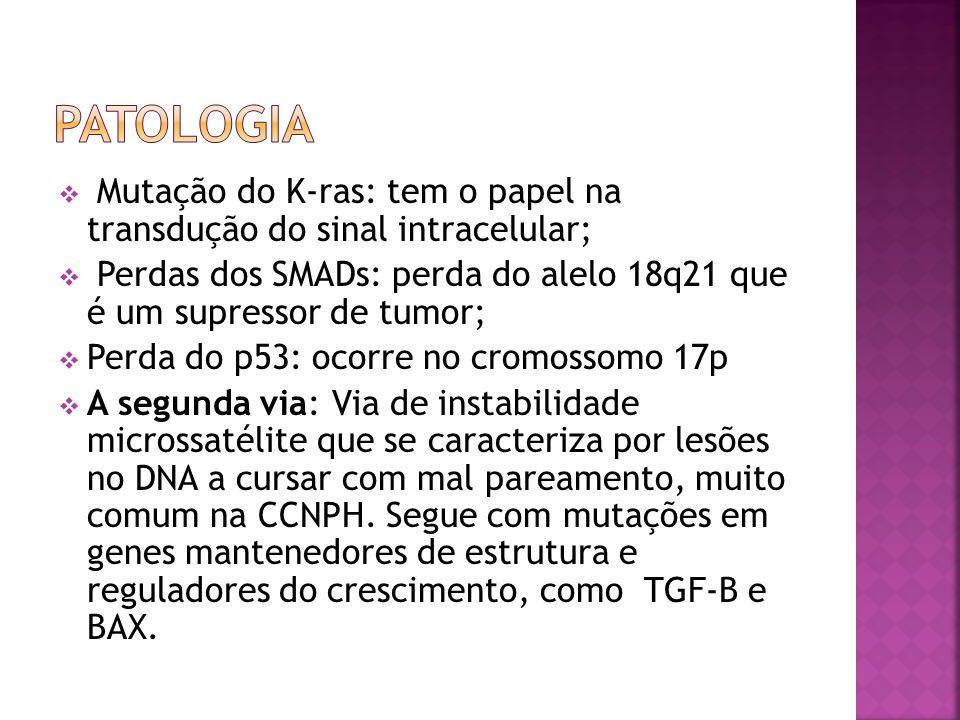 Patologia Mutação do K-ras: tem o papel na transdução do sinal intracelular; Perdas dos SMADs: perda do alelo 18q21 que é um supressor de tumor;