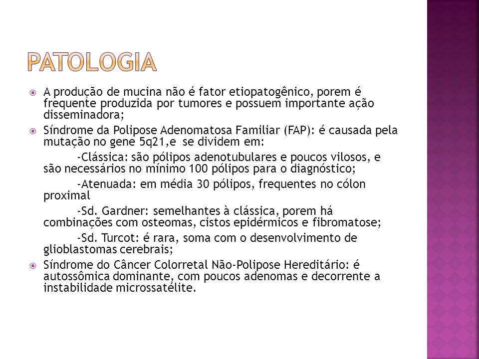 Patologia A produção de mucina não é fator etiopatogênico, porem é frequente produzida por tumores e possuem importante ação disseminadora;