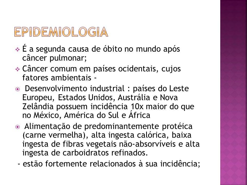 Epidemiologia É a segunda causa de óbito no mundo após câncer pulmonar; Câncer comum em países ocidentais, cujos fatores ambientais -