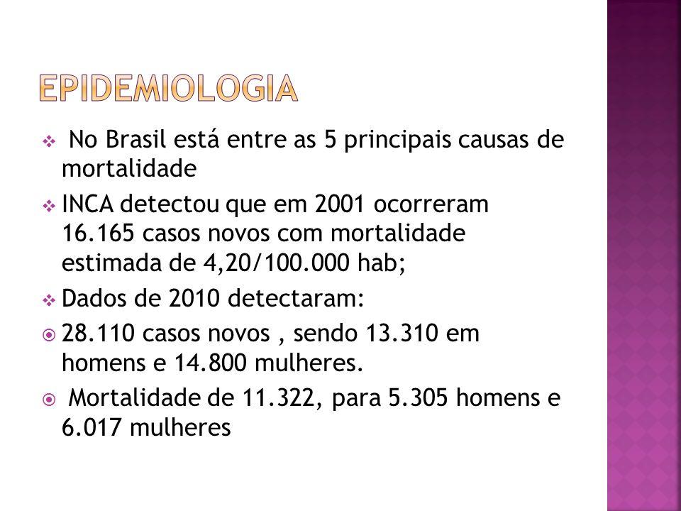 Epidemiologia No Brasil está entre as 5 principais causas de mortalidade.
