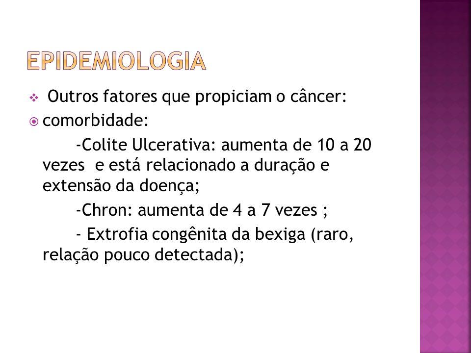 Epidemiologia Outros fatores que propiciam o câncer: comorbidade: