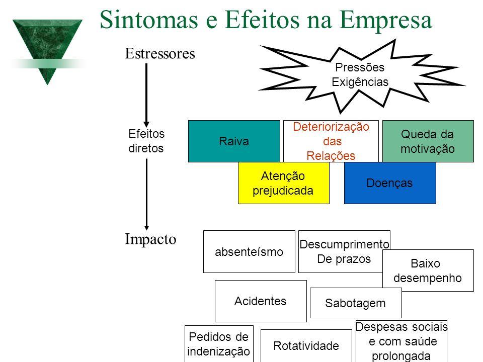 Sintomas e Efeitos na Empresa
