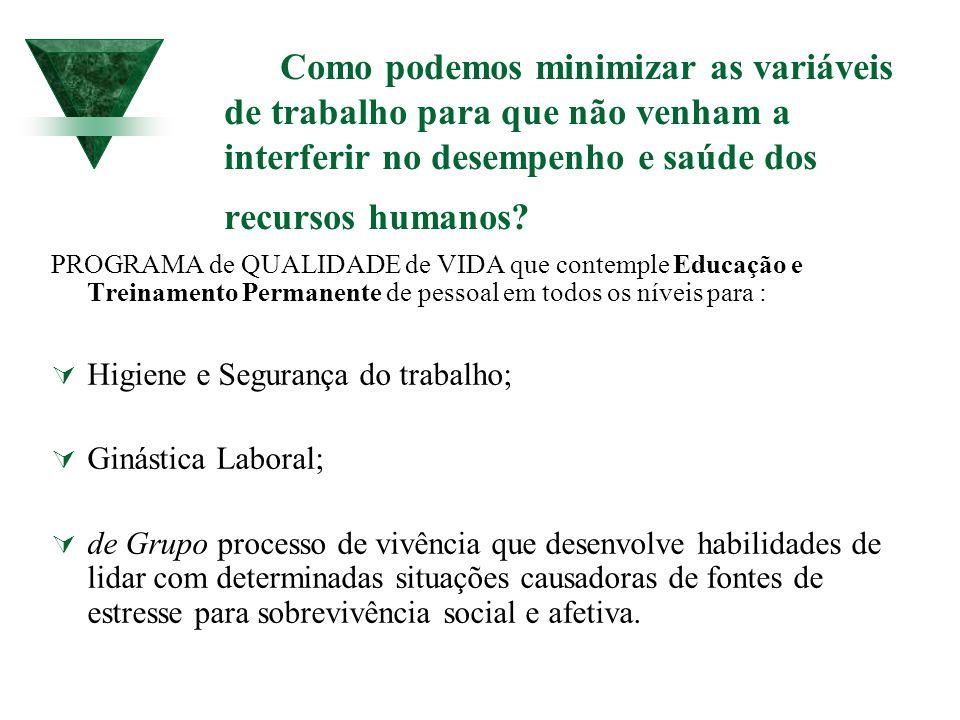Como podemos minimizar as variáveis de trabalho para que não venham a interferir no desempenho e saúde dos recursos humanos