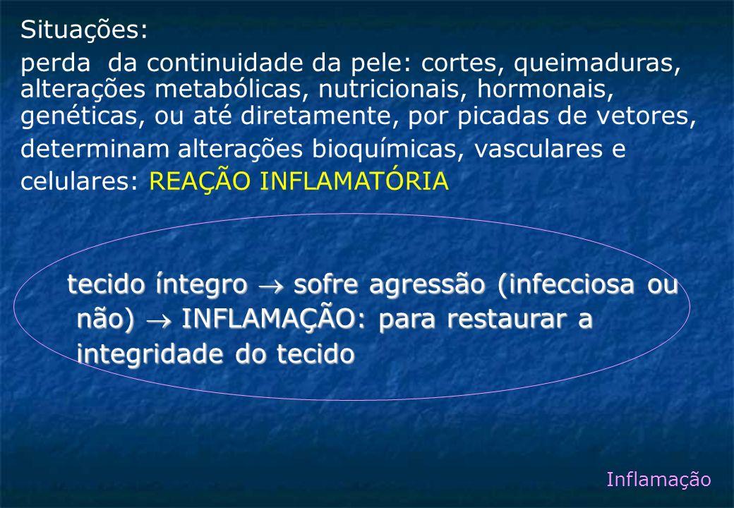 tecido íntegro  sofre agressão (infecciosa ou